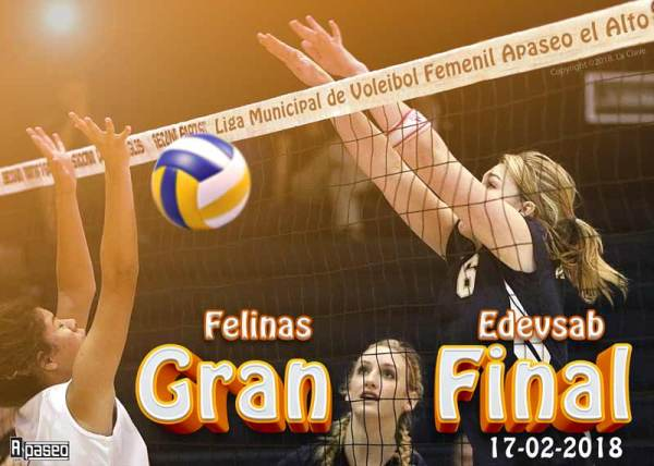 Final voleibol Apaseo 2018
