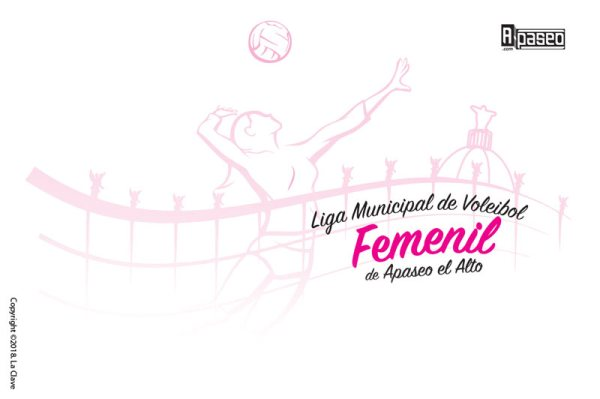 Liga Voleibol Femenil portada