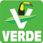 Partido verde icono