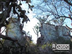 9-hacienda-SN